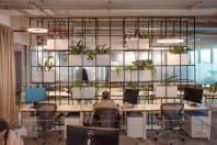 Oficinas MXT